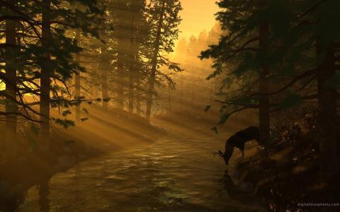 鹿在太阳的光芒