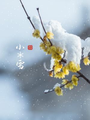 二十四节气之小雪风景