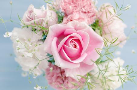 微妙的粉红玫瑰在一束特写镜头