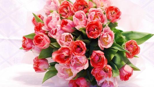 红色的花束