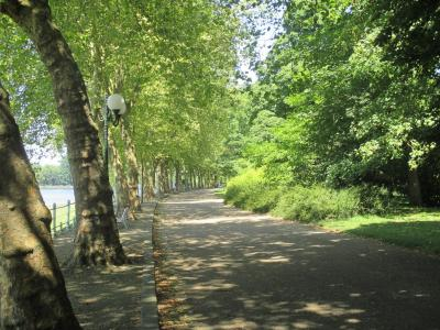 在维希,法国的公园胡同