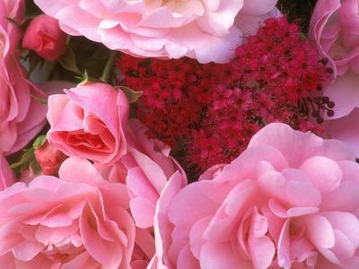 花束从心脏