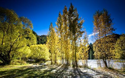新西兰的秋天