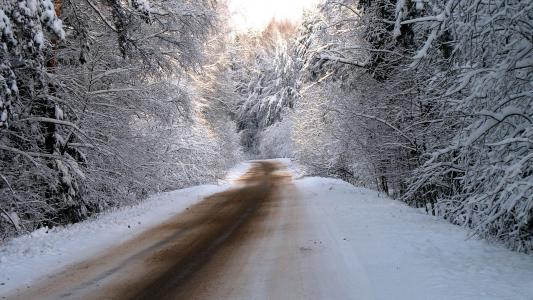 在积雪覆盖的冬季森林道路