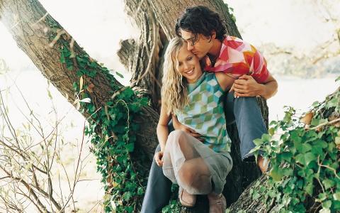 在树上的情侣