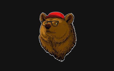 眼镜,熊,帽