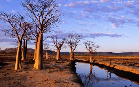 金伯利高原,澳大利亚