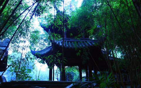 在日本花园