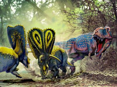 多彩的恐龙在战斗中