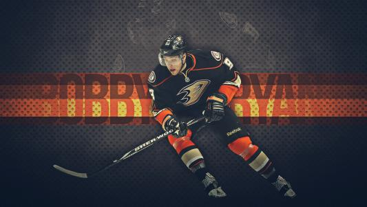 冰球运动员鲍比·瑞安