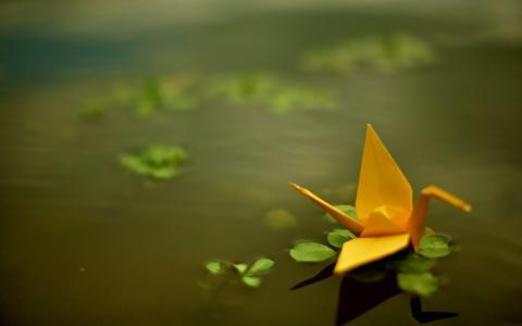 黄纸在水中的折纸