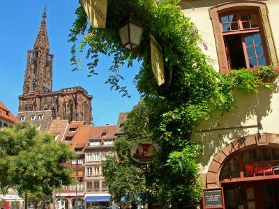 绿色在法国斯特拉斯堡市