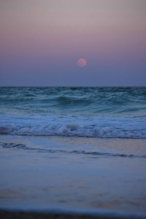 傍晚的海边微信背景