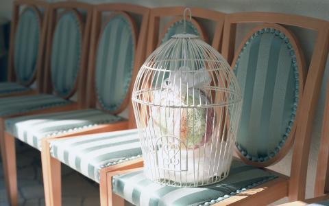 结婚礼物在一个白色的笼子里