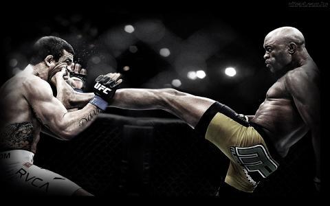 受欢迎的UFC战斗机安德森·席尔瓦。