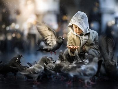 一个小孩子喂鸽子