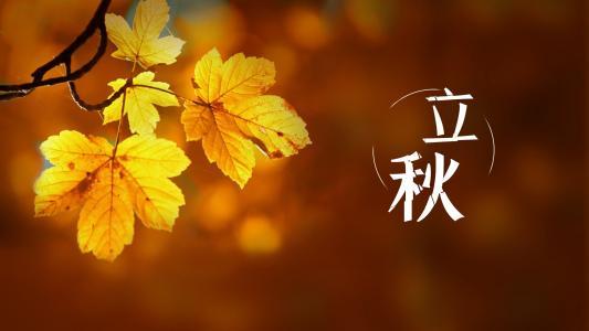 传统二十四节气立秋图片