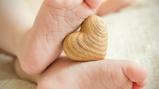 脚之间的木心脏