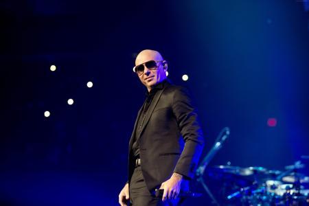 pitbull演唱会_在戴黑眼镜的阶段的普遍的pitbull歌手