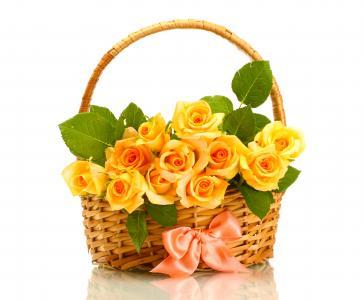 在一个篮子里的橙色玫瑰花束与在白色背景的一把桃红色弓
