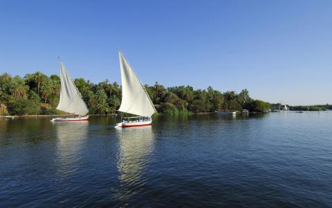 在埃及尼罗河上的帆船