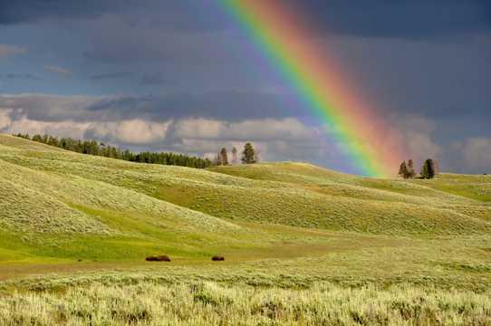 乡村的彩虹