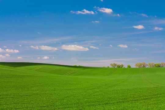 蓝天云彩下的原野景色