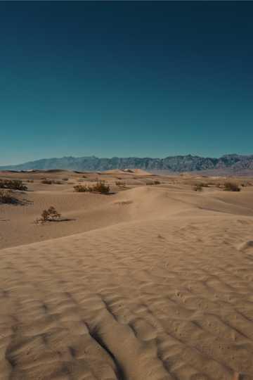 沙漠荒漠景象