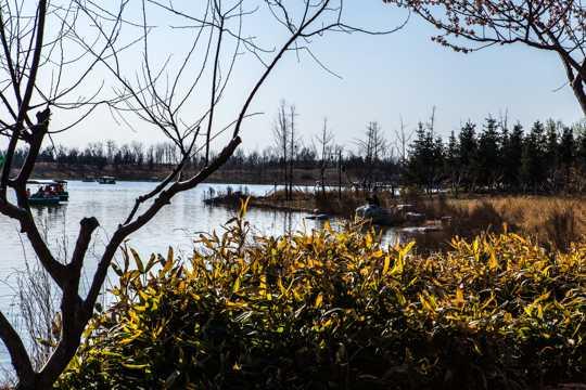 北京南海子公园风光