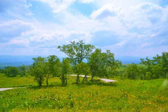 吉林长白山景色图片